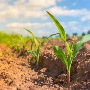 新农业的新力量用户